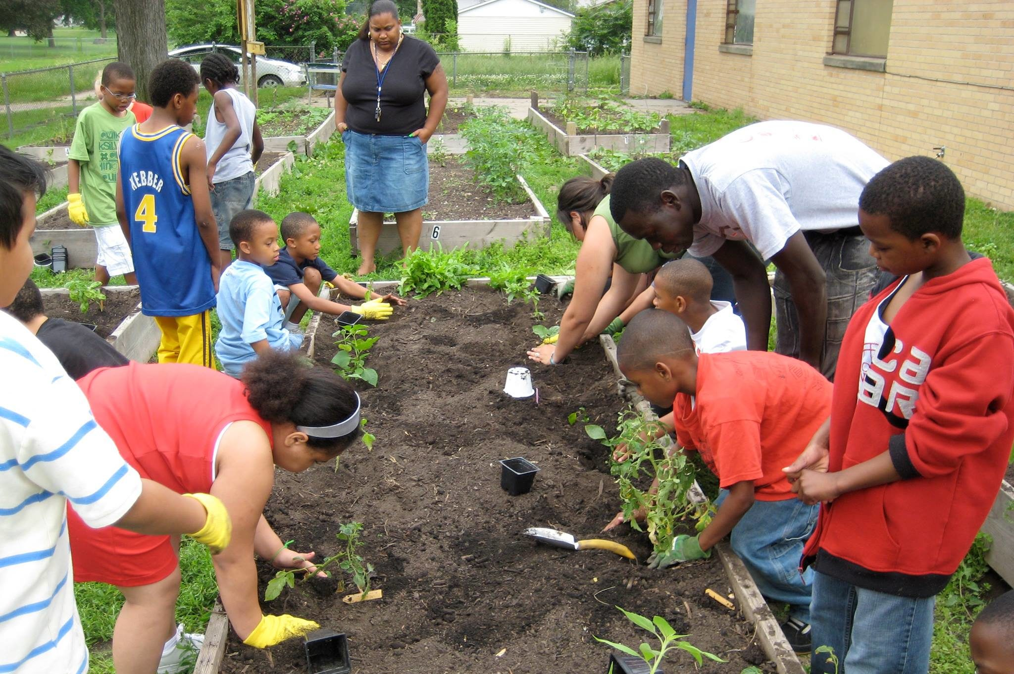 Urban Soil Regeneration & Food Sovereignty