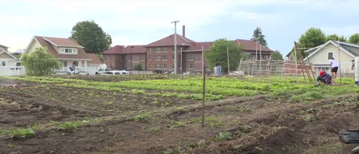 Omaha community gardens play more than one important role
